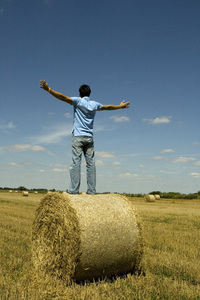 Harvest freedom 1