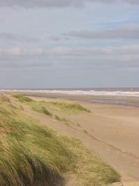 Mogg's Eye Beach
