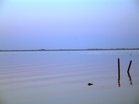 Basin de Thau 3