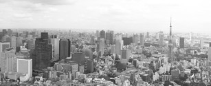 Tokyo Skyline in B&W