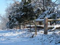 Snow Fence 1