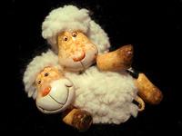 smiling lambs
