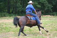 western riding 1