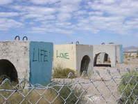 life/love
