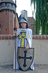 Young teutonic order's knight 1