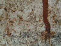 rusty fridge1