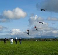 Syncronized Kite Flying 2