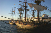 tall ship 3