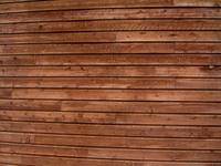 Back Wood 1