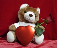 Teddy loves You