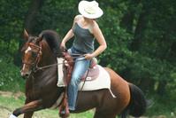 western riding 4