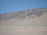 Desert Awake
