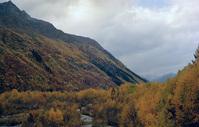 Kavkaz 24