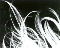 rayograph of my hair