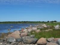 an Estonian beach in Saaremaa island on the Baltic Sea