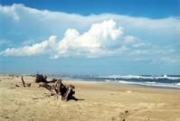Brazil south beach