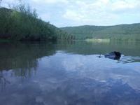 Lake_0 1