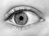 Black and White Eye