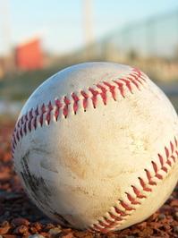 sport balls 1