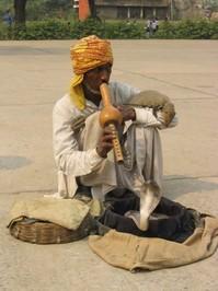 Agra, North India 3