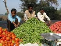 Farm produce 2