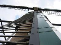 Dutch Windmil 2