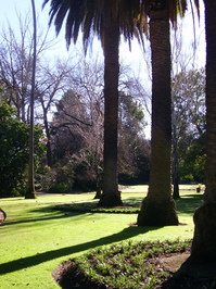 gardens II