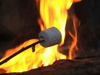 Roasting Marshmallows 2