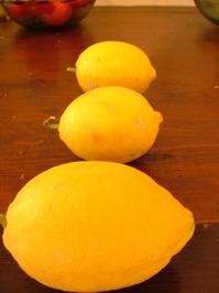 three citrons