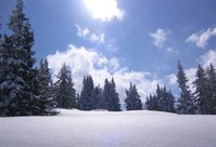 Winter in Flachau