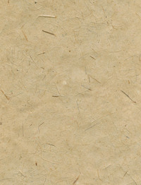 Natural Paper 2