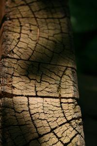 wood in shadows