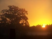 Sunrise on Renninger