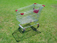 Shopping Trolley Study