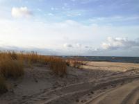 Dunes at Winter 1