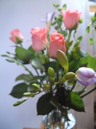 Rosebuds and Freesia 2