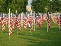 Healing Field Flags 1