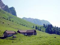 Swiss Landscape 2