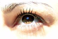 Spring eye 3