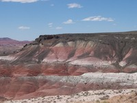 Arizona Petrified Forest and the Painted Desert