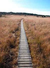 Hohes Venn national parc 3