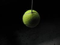 Hanging Tennis Ball