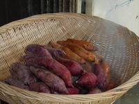 Steaming Sweet Potatoes