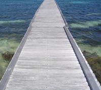 Rotto Island 3