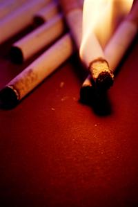 Cigarette - Tobacco - NvdMerwe-ZA