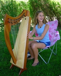 Celtic Harpist