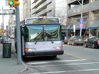 City PAT Bus 2