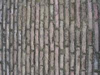 Vatican Wall
