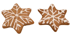 Winter Cookies 6