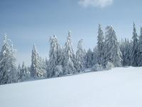 Magurka Mountain in snow
